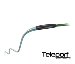 Teleport_Web
